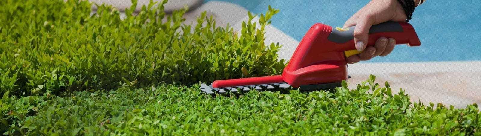 Servicio de mantenimiento de jardín. Grupo Pamarés,su